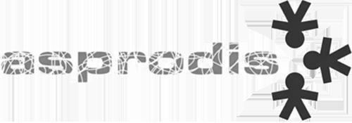 logo-trans-gris